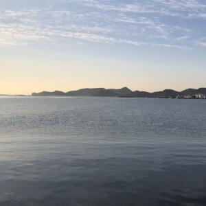 【熊本天草】泳がせ&エギングで釣り納め!冬イカは釣れたのか!?