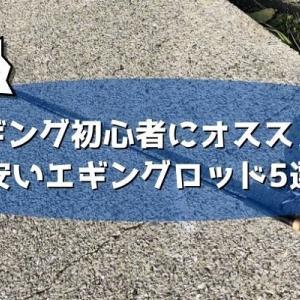 安いエギングロッドおすすめ5選!1万円以下で買えるコスパ最強の神ロッド達!