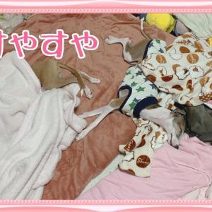 ボビイブラウン☆ホリデー限定☆つづき(  ー̀ωー́ )و北風ビュービュー。昨夜はよく眠れたかな!