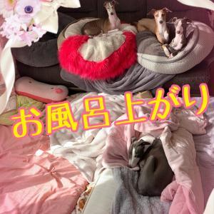 キャンメイク☆韓国コスメでアイメイク(*ᴗ͈ˬᴗ͈)⁾⁾⁾完結٩( 'ω' )و恋する音っち★