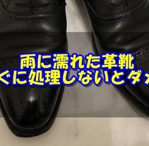 雨の日に履いた革靴、そのままにしてないかい?