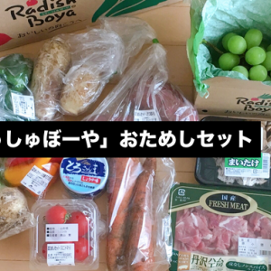 食品宅配サービス「らでぃっしゅぼーや」おためしセットの中身公開!