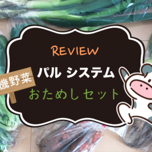 今なら500円!「パルシステム」有機野菜おためしセットを注文してみた