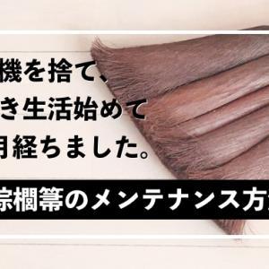 ほうき生活5ヶ月目突入〜棕櫚箒メンテナンス方法の覚書
