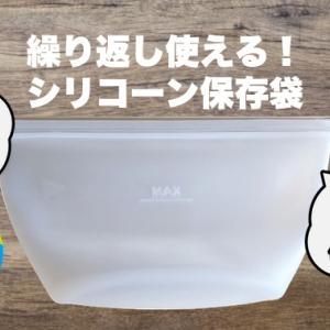 【ダイソー】洗って繰り返し使えるシリコン保存袋レビュー