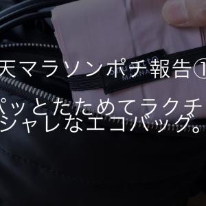 """【楽天マラソンポチ報告①】シュパッとたためて、持ち運びラクちん!おしゃれな""""エコバッグ"""""""