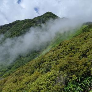 一瞬の雲上の楽園