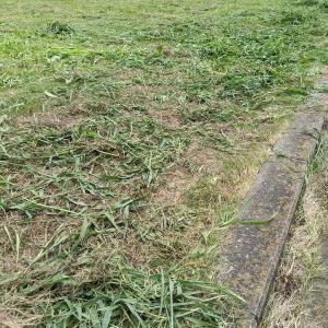 暑さに負けず草刈りしてすっきり