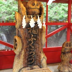 鷲子山神社はアジサイ見頃ですね
