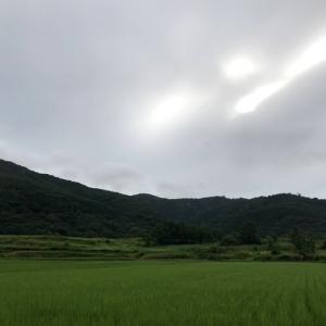 宝篋山(第52回):ニコニコ岩の看板