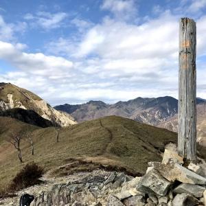 中倉山(百Y山#23):独特の景観