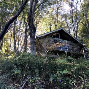 筑波山(第53):久々のキャンプ場コース