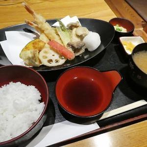 ボリュームたっぷりお魚屋さんのランチ、DINING KITCHEN UOTOYO(堺市東区)