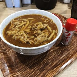 もしかしてカレーライスより美味い!?、カレーハウス CoCo壱番屋 堺浜寺石津店(堺市西区)