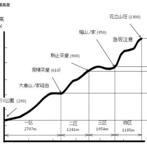 2019丹沢ボッカ駅伝