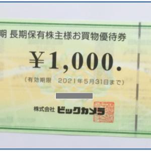 「お買物優待券」来ました。(*´ω`)ビックカメラ