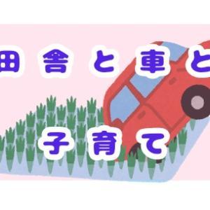 子育て世代は自家用車を持つべきか?田舎と車の関係~意外とかかる車の維持費~