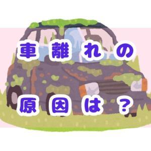 若者の車離れは都会の話だよ~車を持つ目的って何ですか?~