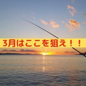 3月の大船渡釣り攻略!おすすめポイントと狙うべき漁港