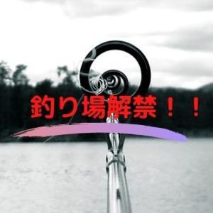 大船渡の新スポットとなるか?工事終了により解禁された釣り場