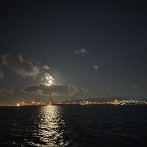 2020/02/09 南港の朝まずめにアジング頑張るものの…サビキに敗北しました