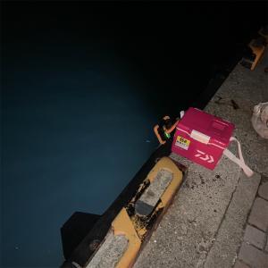 2020/09/20 強風の中…まともに釣りにならず(>_<) 清水港