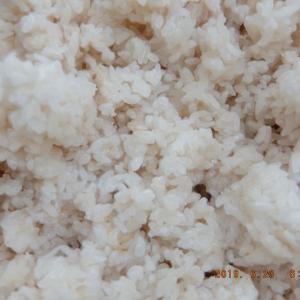 家庭用麹で味醂(塩)を仕込む
