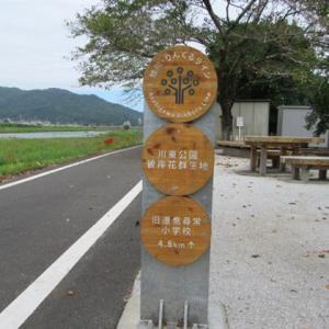 落合 川東公園の彼岸花