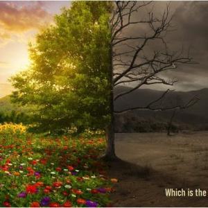 「生きる意義とは?」