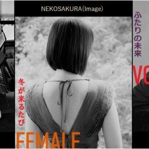 「エクセレント・女性ヴォーカル Vol.1」