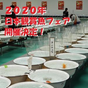 2020年 日本観賞魚フェア開催決定!
