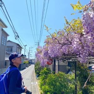 お散歩①^^