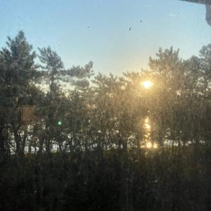 朝陽と海^^