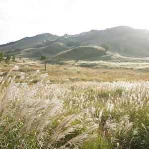【2019年版】兵庫のおすすめススキ名所「砥峰高原」|見頃やアクセスを紹介!