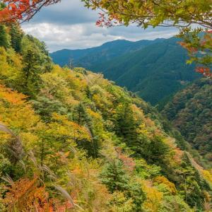 【2019年版】和歌山のおすすめ紅葉スポット9選|見頃やアクセスなどを紹介!