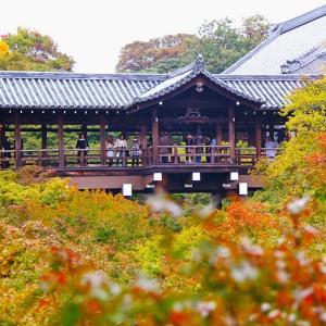 【2019年版】京都の紅葉スポット「東福寺」|見頃や混雑回避のコツなどを紹介!