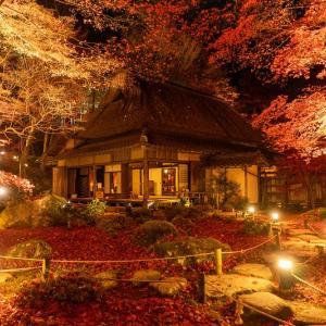 滋賀の絶景「石の寺 教林坊」|紅葉などの見どころやアクセスなどを紹介!