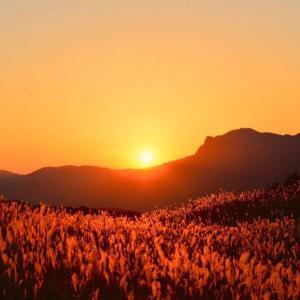 奈良のおすすめ絶景スポット13選|海はないけど絶景はあるぞ