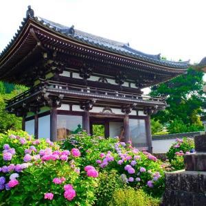 【2020年】京都のあじさい寺「丹州観音寺」|見頃やアクセスなどを紹介!