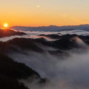 年中見れる!「野迫川村の雲海」見やすい時期やスポット、アクセスを紹介