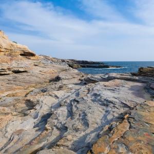 太平洋が作る大岩盤の絶景「千畳敷」見どころやアクセス・駐車場情報を紹介