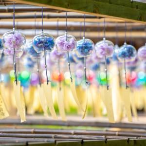 京都の涼やかな風物詩「正寿院 風鈴まつり」