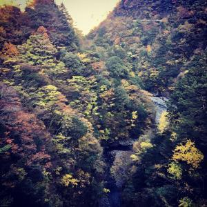 静岡県浜松市【天然温泉 風と月】