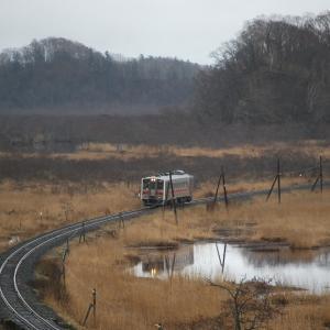 復旧区間の別寒辺牛湿原を行く花咲線