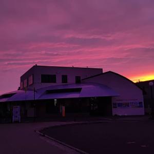 花咲線キハ54もピンクに染まりました♪