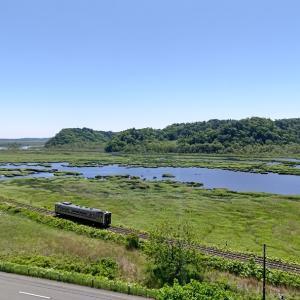 新緑の別寒辺牛湿原と釧路運輸車両所の解体車列