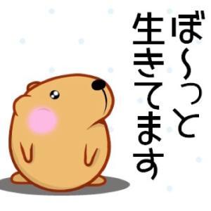 今日のさなぷ〜懸賞生活 米事件