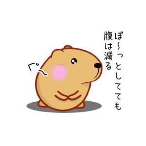 今日のランチ 丸亀製麺