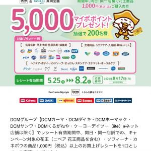 DCM花王キャンペーン レシート8月2日まで