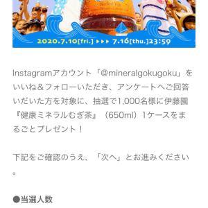 伊藤園キャンペーン 麦茶1ケースが当たる 明日締め切り